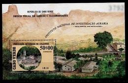 (073) Cape Verde / Cabo Verde  Flora/ Nature Sheet / Bf / Bloc / Plants / Pflanzen  ** / Mnh   Michel BL 12 - Cape Verde