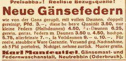Original-Werbung/ Anzeige 1931 - GÄNSEFEDERN / MANTEUFFEL - NEUTREBBIN (ODERBRUCH) - Ca. 60 X 30 Mm - Werbung