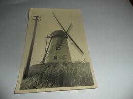 Merelbeke Schelderode Molen Fotokaart - Merelbeke