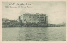 Cartolina -  Mantova. Mulino. - Mantova
