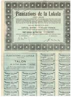 Titre Ancien -Plantations De La Lukula Société Anonyme - Titre De 1928 - Afrika