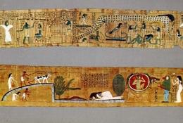 The Egypium Museum - Cairo - Beautiful Specmensof Coloured Popyri - Formato Grande Non Viaggiata – E 7 - Musei