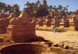 Karnak - The Famous Sphinx Avenue At Amon Temple - Formato Grande Non Viaggiata – E 7 - Cartoline