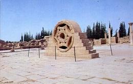 Jericho - Chateau Haifam - Formato Grande Non Viaggiata – E 7 - Cartoline