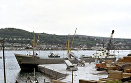 7X5 PHOTO OF FLEVO AT TEIGNMOUTH - Barche