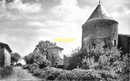 79 Coulonges Sur L'Autize, Les Tours De La Ferme Du Payré, Carte Pas Courante - Coulonges-sur-l'Autize