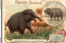 CHROMO CHOCOLAT SUCHARD  DINOTHERIUM GIGANTEUM - Suchard