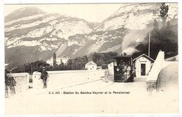 Station Du Genève-Veyrier Et Le Pensionnat - TRAIN EN MARCHE - Ed. J. J. - 163 - GE Genève