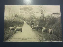 Carte Postale Villeneuve Sur Lot La Pastoure Sur La Route De Pujols - Villeneuve Sur Lot