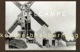 WIJTSCHATE - Heuvelland (W.-Vl.) - Molen/moulin - De Wambekemolen In Bedrijf Voor De Eerste Wereldoorlog - Heuvelland