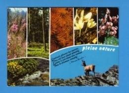 Fleurs - Pleine Nature - J'entends Pleurer Les Sources - Doux Est Leur Chant Plaintif - J'aime à Voir Dans Mes Courses - - Flowers, Plants & Trees