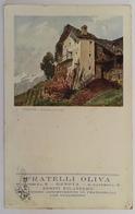 373 Piemonte - Dintorni Di Cogne - Autres Villes