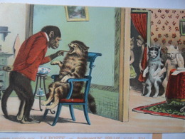 Odontology Singe Dentiste Monkey Cats Chats Patience - Hedendaags (vanaf 1950)