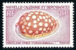 NOUV.-CALEDONIE 1970 - Yv. 370 **   Cote= 8,40 EUR - Coquillage Porcelaine Crible  ..Réf.NCE25109 - Nouvelle-Calédonie