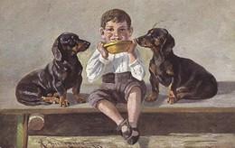 Dackel  Teckel. Dachshund Enfant A.Schönian  Chien  Old Dog Postcard Cpa. 1908 - Cani
