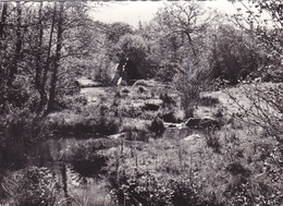 CPSM 23 @ VILLENEUVE - CREUSE - Les Environs Du Vieux Moulin En 1963 - Autres Communes