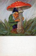 Carte, Champignon,pilz, Mushroom, Illustrateur Allemand Paul Lothard Müller - Champignons