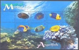British Indian Ocean Territory 2006 Mi 406-411 MNH ( ZS4 BIOark406-411 ) - Fishes