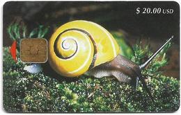 Cuba - Etecsa - Yellow Snail - CU-023 - 1999, 40.000ex, Used - Cuba