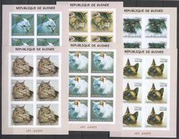 KV274 IMPERFORATE 2002 GUINEA FAUNA PETS ANIMALS CATS LES CHATS !!! 6SET MNH - Domestic Cats