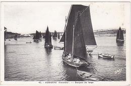 29 - AUDIERNE (Finistère) - Barques Au Large - 1937 (Voiliers, Pêcheurs) - Audierne
