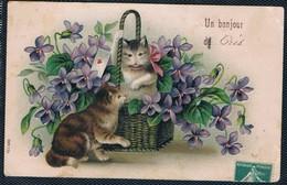 2 Chats -cats - Poezen -katzen-gaufrée - Cats