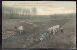 LIANCOURT 60 - Etablissements Bajac - Charrue Brabant Double Et Herse écrouteuse émotteuse - #B671 - Liancourt