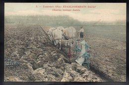 LIANCOURT 60 - Etablissements Bajac - Charrue Brabant Double - #B673 - Liancourt