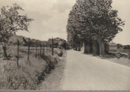 C. P. - PHOTO - LA ROQUEBRUSSANNE - ENTRÉE ROUTE DE BRIGNOLES - 170 - A. B. - La Roquebrussanne