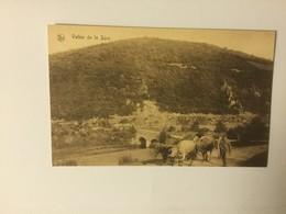 VALLEE DE LA SURE    BELLE ANIMATION - Postkaarten