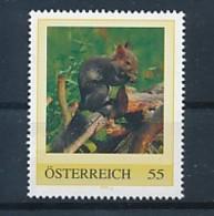 ÖSTERREICH Personalisierte Marke - Eichhörnchen - MNH *348* - Nager