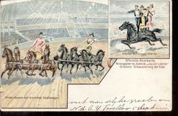 Barnum & Bailey Circus - Paarden - Deventer - Den Haag 1901 - Den Haag ('s-Gravenhage)