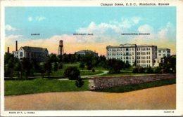 Kansas Manhattan Campus Scene Kansas State College Curteich - Manhattan
