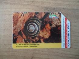 CUBA  USED CARDS  ANIMALS  SNAIL - Cuba