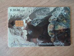 CUBA USED CARDS  ANIMALS TURTLES - Cuba