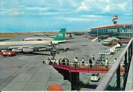 "7-FIUMICINO-ROMA-AEROPORTO INTERCONTINENTALE ""LEONARDO DA VINCI""AEREO PAKISTAN INTERNATIONAL - Aérodromes"