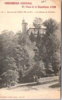 54 CIREY - Le Château De Chatillon. - Cirey Sur Vezouze