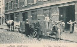 Antwerpen Priamos Nr.24 Groen Het Lossen Van Ivoor In 1912 ??? - Antwerpen