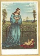 Madonna - Non Viaggiata - Vergine Maria E Madonne