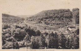 Les Environs De Longwy  - Saulnes   La Vallée De  Lasauvage - Longwy