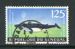 SENEGAL- P.A Y&T N°122- Oblitéré (baleines) - Senegal (1960-...)