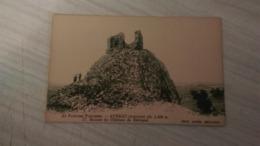 CPA - AU PAYS DES NARCISSES - AUBRAC (Aveyron) - 17. Ruines Du Château De Belveyet - France