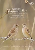 Grecia 2014 Hojas Bloque 74/78 Fauna : Pajaros -  HB En Bolsa   **/MNH - Grecia