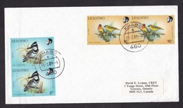 Lesotho: Cover To Canada, 1989, 4 Stamps, Cape Weaver, Kingfisher Bird, Cancel Khabo, Rare Real Use (3 Stamps Damaged!) - Lesotho (1966-...)
