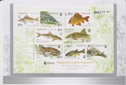 2019 Ukraine  Freshwater Fish Imperforated Sheet In Folder MNH - Ukraine