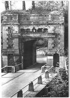 LOT DE 4 CPSM - CEC GIVET - Centre Entraînement Commandos - Manoeuvres