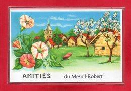 14-CPSM LE MESNIL-ROBERT - Francia