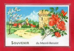 14-CPSM LE MESNIL-BENOIST - Francia