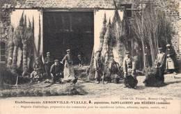 08 2 Ets Arbonville Vialle SAINT LAURENT - France
