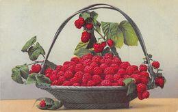 Framboises - Panier - Framboise - Botanik